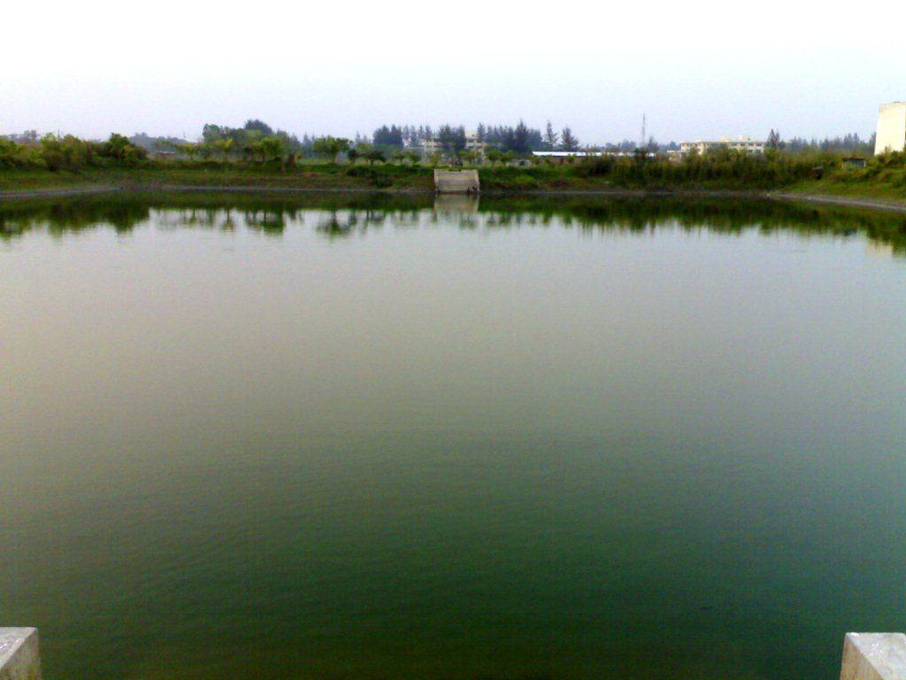 NSTU Pond